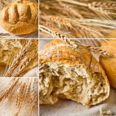 Bread and ears of wheat collage — Stock Photo