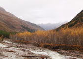 Sullen autumn mountain landscape — Stock Photo