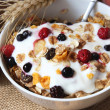 Muesli with yogurt,healthy breakfast rich in fiber — Stock Photo #11945838