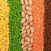 Beans, lentils, peas and corn — Stock Photo