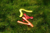 Flying boomerang toys lying on grass. Outdoor game — Stock Photo