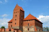 Trakai Château xiv, xv siècle architecture — Photo