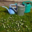 Garden watering-can spraying tools objects grass — Stock Photo