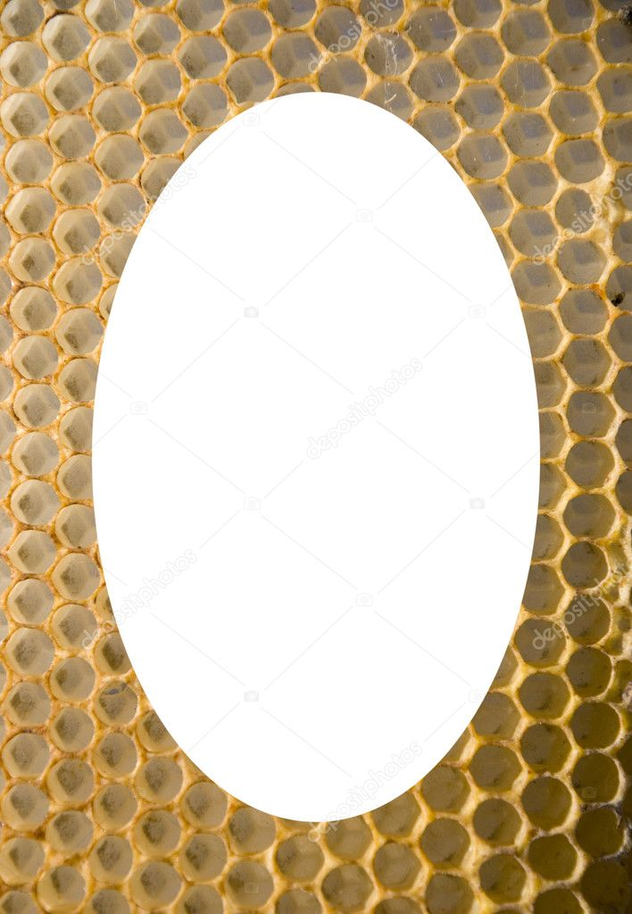 Isolated white oval place for text photograph image in center of honeycomb mesh background — Stock Photo #11047380