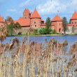 Stock Photo: Trakai castle near Galve lake in Lithuania. XIV
