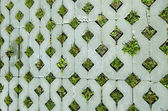 Background of hole tiled downhill slope grass grow — Stock Photo