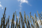 Fence made of tree branches on blue cloudy sky — Stock Photo