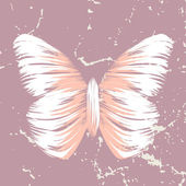 Butterfly — Stockvector