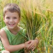 Stock Photo: Little boy in a wheat field