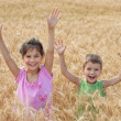 Stock Photo: Two kids on a wheat field