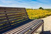 Bench Yellow Flowers — Stock Photo