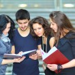 Stockfoto: Group of students talking and holding notebooks