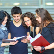 Foto de Stock  : Group of students talking and holding notebooks