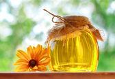 Fragrant honey — Stock Photo