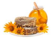 Sweet flower honey — Stock Photo