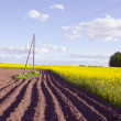 Stock Photo: Spring landscape with tillage and rapes field