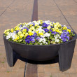 Stock Photo: Big flower pot in city square