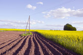 Spring landscape with tillage and rapes field — Stock Photo