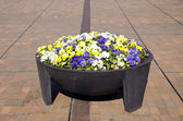 Big flower pot in the city square — Stock Photo