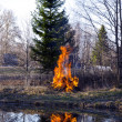 Early spring fire in farm — Stock Photo #11400095