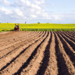 Stock Photo: Spring field with tillage and tractor