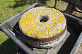 Ancient millstone with yellow lichens — Photo