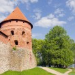 Stock Photo: Ancient lithuanicastle Trakai tower