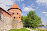 Ancient lithuanian castle Trakai tower — Stock Photo