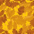 Pattern of oak autumn leaves. seamless pattern. — Stock Vector #12069563