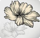 Rosehip. Wild Rose, hand-drawing. Vector illustration — Stock Vector