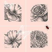 Set of decorative floral backgrounds, hand-drawing. Vector illustration. — Stock Vector