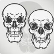 Skull, vector illustration. — Stock Vector