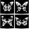 Set butterflies to skulls. Vector illustration. — Stock Vector