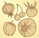 蔬菜和水果,设置,手绘图。矢量插画. — 图库矢量图片