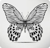 Butterfly, hand-drawing. Vector illustration. — Stock Vector