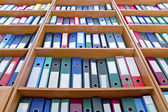 File folders, standing on the shelves — Stock Photo