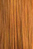 Texture de cheveux roux — Photo