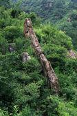 Mountain natural scenery, north China — Stock Photo