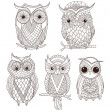 Stockvektor : Set of cute owls.