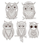 Set of cute owls. — Stock Vector
