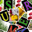 Summer background with flowers photos and letters cards — Stock Photo