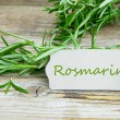 Freshly rosemary — Stock Photo