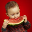 Portrait of a handsome kid biting a watermelon over red background — Stock Photo