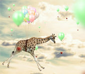 Ingenious giraffe reaching an apple flying using balloons — Stock Photo