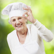 Senior woman cook doing an excellent symbol against a nature bac — Stock Photo #11580776