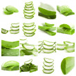 Set Of Aloe - Stock Photo
