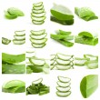 Stock Photo: Set Of Aloe