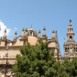 Seville Cathedral — Stock Photo