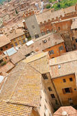Siena downtown roofs — 图库照片