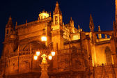 Cathedral of Seville by night — Stock fotografie